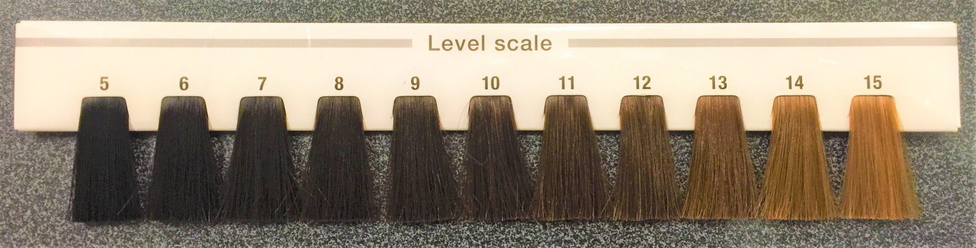 髪の明るさごとの毛束
