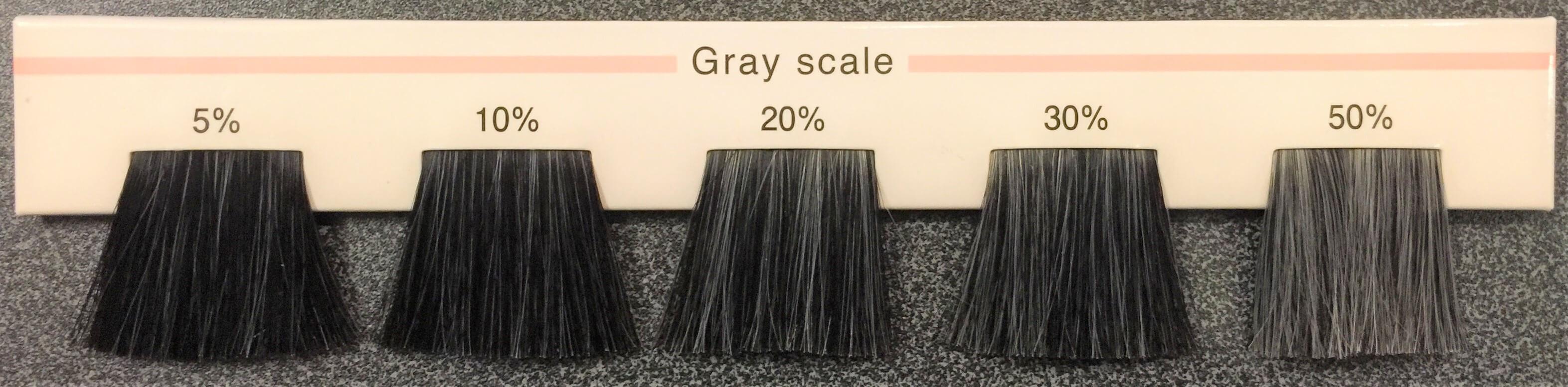白髪の割合 毎の毛束